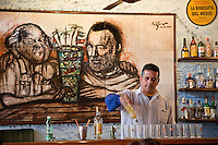 Cuba, Havana.  La Bodeguita del Medio.  Bartender at Work, Mixing Mojitos.