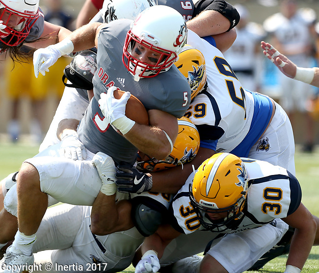 SIOUX FALLS, SD - SEPTEMBER 2: Austin Stone #5 from the University of Minnesota Morehead tries to pick up a couple extra yards against a trio of defenders from Augustana in the first half of their game Saturday afternoon at Augustana University. (Photo by Dave Eggen/Inertia)