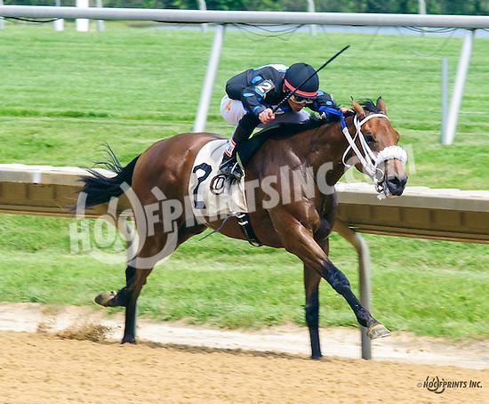 Dennis' Diamond winning at Delaware Park on 6/11/16