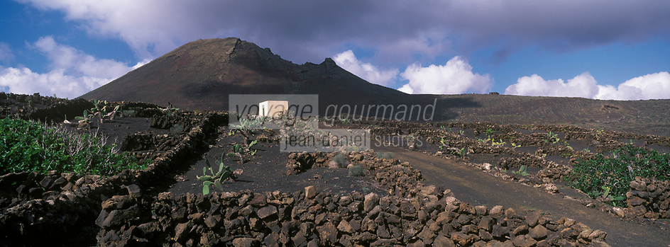 Europe/Espagne/Canaries/Lanzarote : Paysage volcanique de la Geria