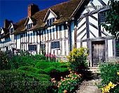 Tom Mackie, FLOWERS, photos, Palmer's Farm, Wilmcote, Warwickshire, England, GBTM871003-1,#F# Garten, jardín