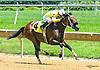 Boheme de Lavi winning at Delaware Park on 6/28/17