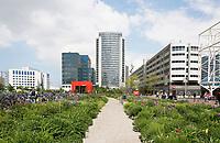 Nederland Amsterdam  2017 -  Groenstrook bij Station Sloterdijk. . Foto Berlinda van Dam / Hollandse Hoogte