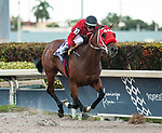 December 8, 2019: #10, Letruska, and Jockey Emisael Jaramillo take the Copa Invitacional Del Caribe for Trainer Fausto Gutierrez and Mexico on Caribbean Classic Day at Gulfstream Park on December 8, 2019 in Hallandale Beach, FL. (Photo by Carson Dennis/Eclipse Sportswire/CSM)