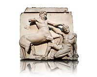 Sculpture of Lapiths and  Centaurs battling from the Metope of the Parthenon on the Acropolis of Athens no XXX. Also known as the Elgin marbles. British Museum London. The Centaur is about to trample the Lapith who is picking up a stone as his final defence.