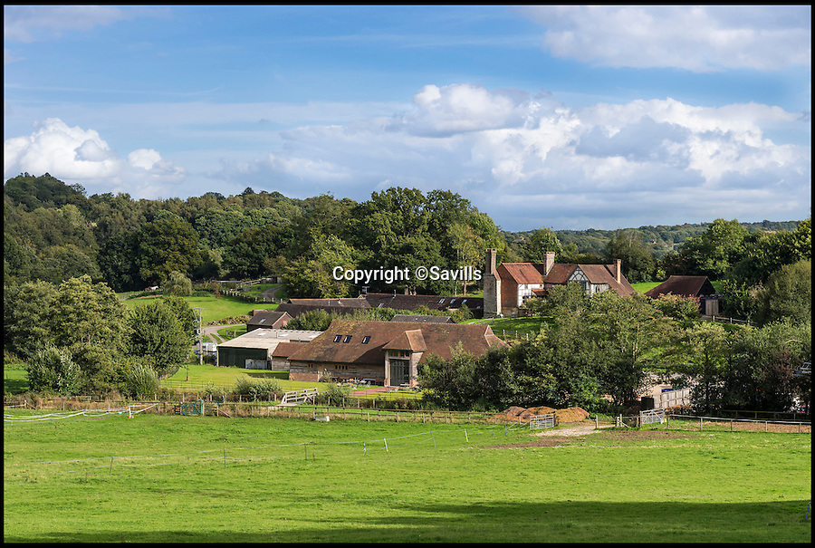 BNPS.co.uk (01202 558833)<br /> Pic: Savills/BNPS<br /> <br /> The new owners of this stunning country house will have plenty of plonk to get them through the festive period - because it comes with its very own vineyard in the back garden.<br /> <br /> The 150-acre Kingscote Estate is on the same latitude as the Champagne region of France and its grape vines can yield a staggering 100,000 bottles of still and sparkling wine a year.<br /> <br /> Kingscote, near East Grinstead in the Sussex Weald, was the brainchild of the late Christen Monge who quit his career in advertising to create an English winery on the estate he bought in 1999.<br /> <br /> It is on the market with Savills for &pound;4.5 million.
