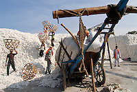 INDIA Madhya Pradesh , biodynamic organic cotton project bioRe in Kasrawad , storage of harvested cotton at ginning factory, farmer supply cotton with bullock carts / INDIEN Madhya Pradesh , Lagerplatz und Entkernungsfabrik der bioRe India , Projekt fuer biodynamischen Anbau von Biobaumwolle in Kasrawad