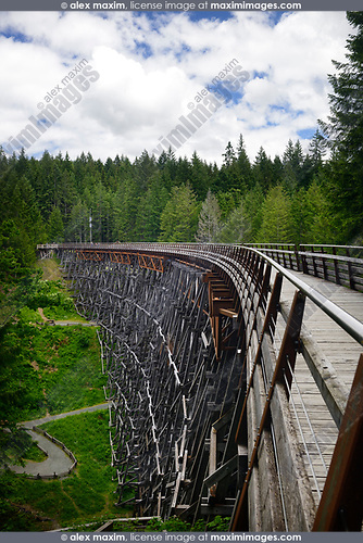 Kinsol Trestle wooden bridge over Koksilah river, Shawnigan Lake, Vancouver Island, British Columbia, Canada