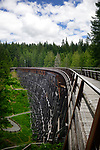 Kinsol Trestle wooden bridge over Koksilah river, Shawnigan Lake, Vancouver Island, British Columbia, Canada