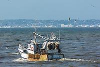 France, Calvados (14), Côte Fleurie,  Trouville-sur-Mer,  bateau de pêche quitant le port // France, Calvados, Côte Fleurie, Trouville sur Mer, Fishing boat living  harbor