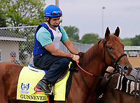 LOUISVILLE, KENTUCKY - APRIL 30: Gunnevera, owned by Peacock Stables, LLC and trained by Antonio Sano, walks to the track before exercising in preparation for the Kentucky Derby at Churchill Downs on April 30, 2017 in Louisville, Kentucky. (Photo by Jon Durr/Eclipse Sportswire/Getty Images)