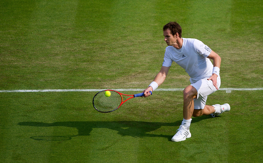 Andy Murray (GBR) [2] in action during his victory over Yen-Hsun Lu (TPE) in their Gentlemen's Singles Second Round match today - Andy Murray (GBR) [2] def Yen-Hsun Lu (TPE) 6-3 6-3 7-5<br /> <br />  (Photo by Stephen White/CameraSport) <br /> <br /> Tennis - Wimbledon Lawn Tennis Championships - Day 3 Wednesday 26th June 2013 -  All England Lawn Tennis and Croquet Club - Wimbledon - London - England<br /> <br /> &copy; CameraSport - 43 Linden Ave. Countesthorpe. Leicester. England. LE8 5PG - Tel: +44 (0) 116 277 4147 - admin@camerasport.com - www.camerasport.com.