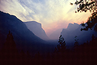 Unique fine art landscape image of Yosemite Valley, in Yosemite National Park, California, from Tunnel View at sunrise with valley shrouded in rose-colored smoke from Lake Berryessa fire, resulting in a mauve silhouette of El Capitan on the left and the 3 Brothers on rhe right, with pine boughs in foreground.