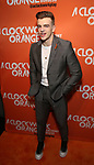 Jonno Davies attends the Opening Night After Party for 'A Clockwork Orange'  at the New World Stages on September 25, 2017 in New York City.