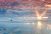 Low tide reflection with sunburst and arch. Rockaway Beach. Oregon