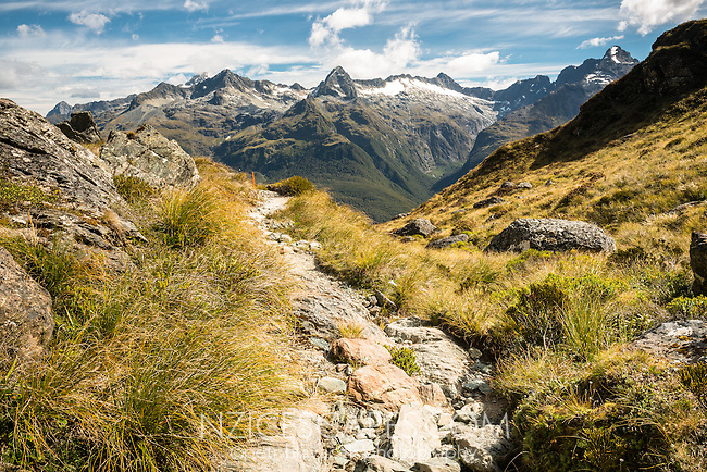 Routeburn Track with Darran Mountains in background, Fiordland National Park, UNESCO World Heritage Area, Southland, South Island, New Zealand, NZ