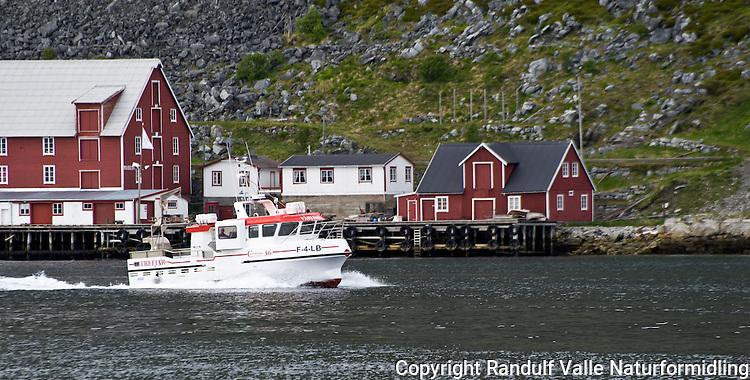 Speedsjark på vei ut fra Kjøllefjord ---- Fishing boat going out from Kjøllefjord.