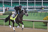 May 1, 2014: Vinceremos gallops in preparation for the Kentucky Derby at Churchill Downs in Louisville, KY. Zoe Metz/ESW/CSM