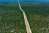 Aerial view of a road in the bush, Botswana.