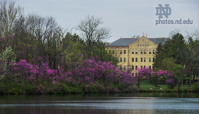 May 12, 2014; Carroll Hall, Spring 2014<br /> <br /> Photo by Matt Cashore/University of Notre Dame