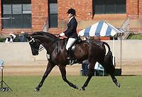 Lady Rider 21 U30