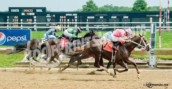 Nacho Saint winning at Delaware Park on 6/27/13