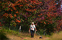 2014_09_14_BRAMSHOTT_MAPLES