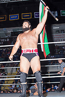 Rusev, The Bulgarian Brute, holds a Bulgarian flag during his match against John Cena during a WWE Live Summerslam Heatwave Tour event at the MassMutual Center in Springfield, Massachusetts, USA, on Mon., Aug. 14, 2017. Rusev lost the match.