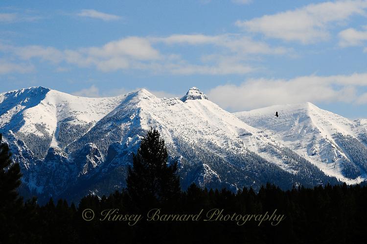 Kootenay Rockies, British Columbia in spring time