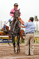Corporate Jungle with jockey Javier Castellano up after winning the Appleton Stakes(G3T). Gulfstream Park Hallandale Beach Florida. 03-31-2012. Arron Haggart/Eclipse Sportswire