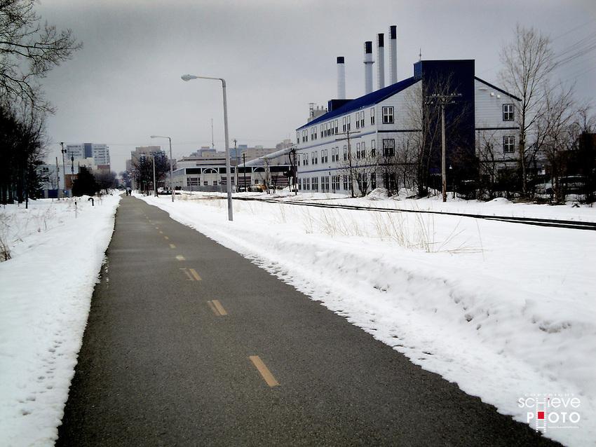 Grey winter day on a Madison, Wisconsin bike path.