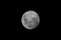 SÃO PAULO, SP, 06.04.2020 - LUA-SP - Lua cheia vista na região central de São Paulo, nesta segunda-feira, 6. (Foto Charles Sholl/Brazil Photo Press/Folhapress)