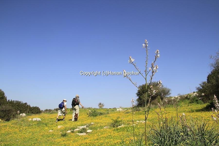 Israel, Shephelah, Hiking to at Khirbet Qeiyafa
