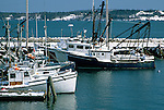 Harbor scene in Eastport, Washington County, Maine, USA