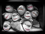 Pile of toy stuffed Black & White, Gray sharks grinning on display with pink mouths.  Funny and ironic.