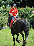 Carol Nulty demonstrates stunt riding on Nelson as part of the Turfman Festival in Ardee. Photo: Colin Bell/pressphotos.ie