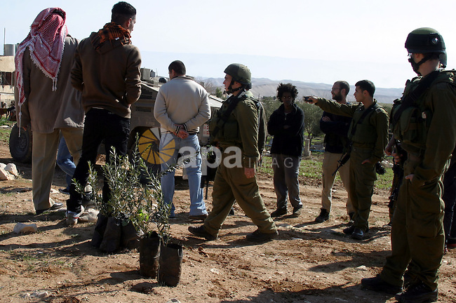 Israeli soldiers prevented Palestinian farmers to cultivating olives on their land near the Nukadim settlement southern West Bank city of Bethlehem on 01 February 2010. Photo by Najeh Hashlamoun