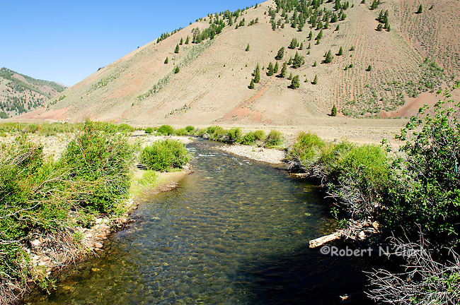 North Fork of the Big Lost River off of Trail Creek Rd east of Sun Valley, Idaho