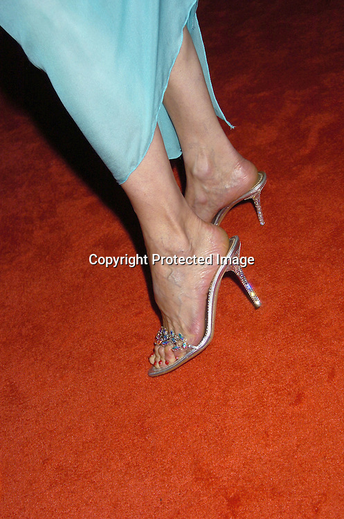 Susan Lucci's shoes from a Stripper Store in Las Vegas ..at The American Women in Radio and Television's 30th Annual Gracie Allen Awards on June 22, 2005 at the Marriott Marquis. ..Photo by Robin Platzer, Twin Images