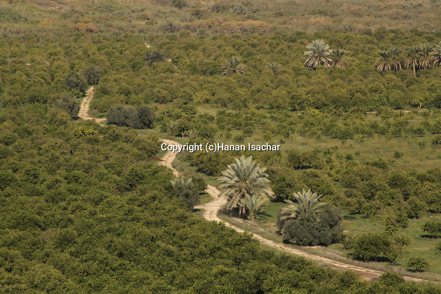 Jordan, the Jordan River valley by Kibbutz Tirat Zvi