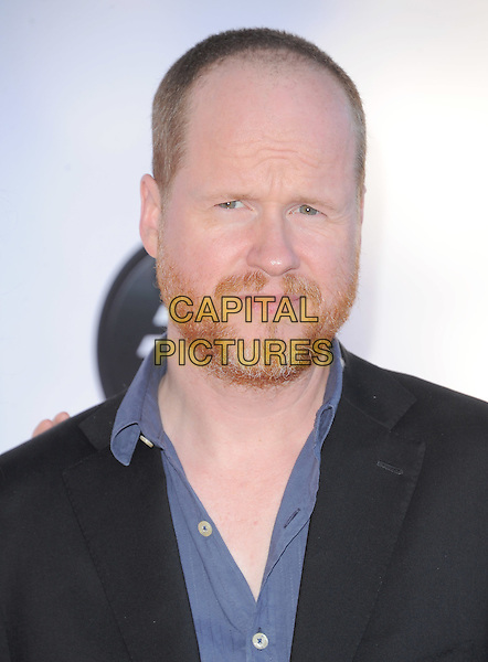 Joss Whedon.attends the Dizzy Feet Foundation's Celebration of Dance Gala held at The Dorothy Chandler Pavilion at The Music Center in Los Angeles, California, USA,  July 28th 2012..portrait headshot blue shirt beard facial hair          .CAP/RKE/DVS.©DVS/RockinExposures/Capital Pictures.