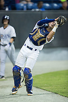 Burlington Royals catcher Nathan Esposito (7) catches a  foul pop fly in front of the Princeton Rays dugout at Burlington Athletic Stadium on August 12, 2016 in Burlington, North Carolina.  The Royals defeated the Rays 9-5.  (Brian Westerholt/Four Seam Images)