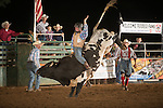 SEBRA - Gordonsville, VA - 7.13.2014 - Bulls & Action