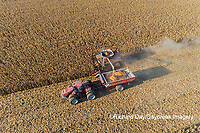 63801-12506 Harvesting corn and unloading into grain cart in fall-aerial  Marion Co. IL
