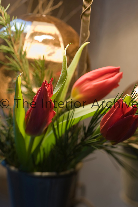 Tulips and spruce for decorating the house are kept fresh in a bucket of water