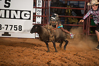 SEBRA - Chesterfield, VA - 8.29.2014 - Mutton Bustin'