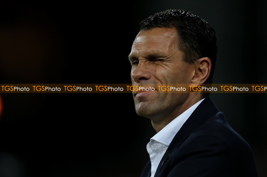 Sunderland manager Gustavo Poyet - Crystal Palace vs Sunderland - Barclays Premier League Football at Selhurst Park, London - 03/11/14 - MANDATORY CREDIT: Simon Roe/TGSPHOTO - Self billing applies where appropriate - contact@tgsphoto.co.uk - NO UNPAID USE