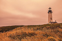 Yaquina Head Lighthouse 2