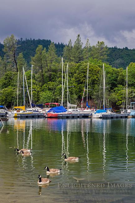Sailboats docked at Whiskeytown Lake, Whiskeytown National Recreation Area, Shasta - Trinity National Forest, Shasta County, California