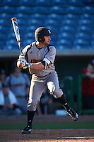 Louisville Cardinals center fielder Logan Taylor (24) at bat during a game against the Ball State Cardinals on February 19, 2017 at Spectrum Field in Clearwater, Florida.  Louisville defeated Ball State 10-4.  (Mike Janes/Four Seam Images)